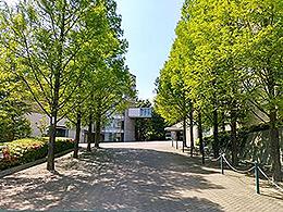 神戸常盤大学短期大学部(口腔保健学科)
