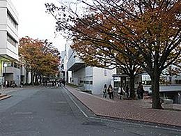 大阪芸術大学(映像学科)