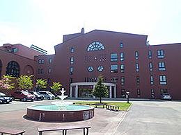 日本医療大学wikipedia?