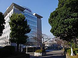 神奈川大学(現代ビジネス学科)