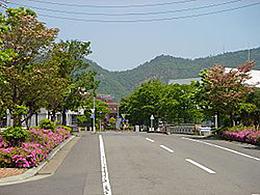 岐阜大学(地理学専攻)
