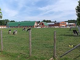 酪農学園大学wikipedia