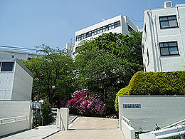 神戸薬科大学(薬学部)