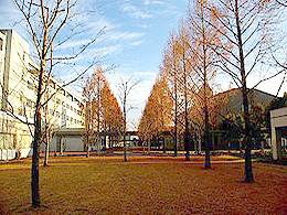 国際医療福祉大学(薬学部)