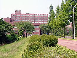 上越教育大学(学校教育学部)