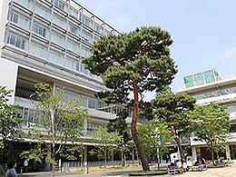 成城大学(文芸学部 マスコミュニケーション学科)