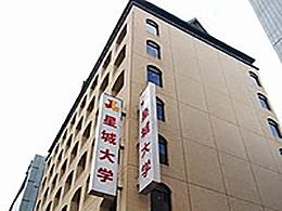星城大学(経営学部)