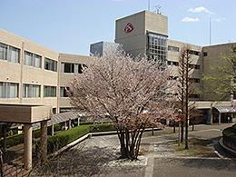 東京家政学院大学(食物学科)