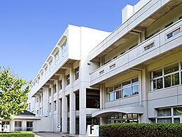 常磐大学ホームページ