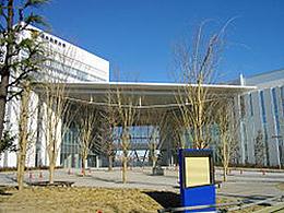 日本体育大学(体育学科)