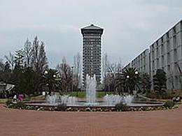 横浜薬科大学(薬科学科)