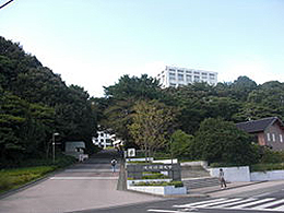 流通経済大学(社会学科)