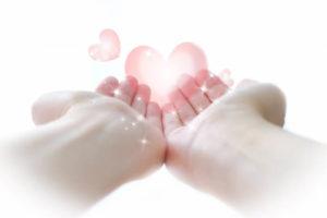 手のひらの愛情