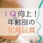 IQ向上!年齢別の知育玩具