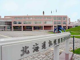 札幌国際情報高等学校