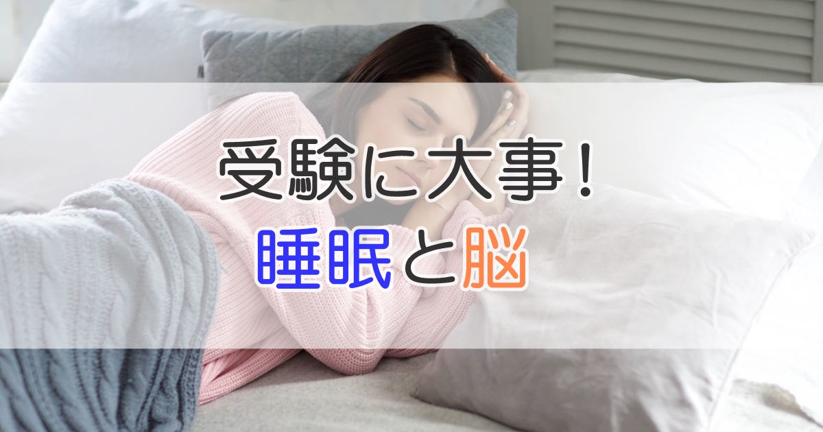 受験に大事!睡眠と脳