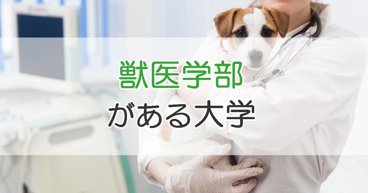 獣医学部がある大学