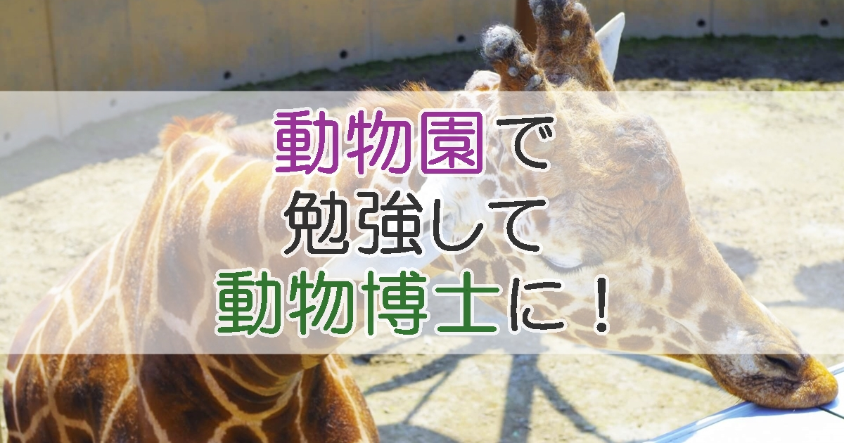 動物園で勉強して動物博士に!