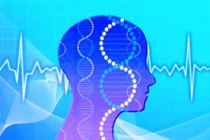 脳の信号イメージ